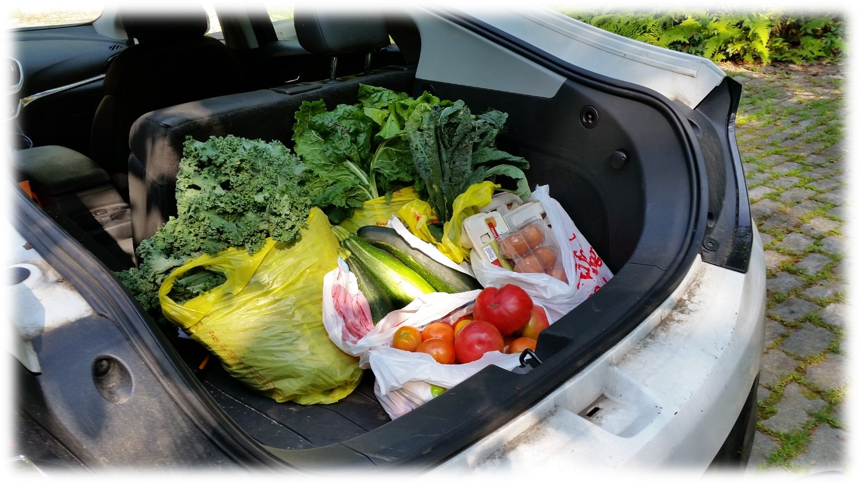 Trunk filled with garden veggies