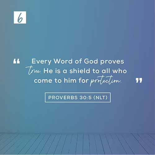 """Proverbs 30:5 (NLT) – """"Every Word of God proves true. He is a shield to all who come to him for protection."""""""
