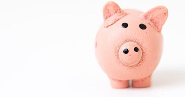 Cute little piggy bank