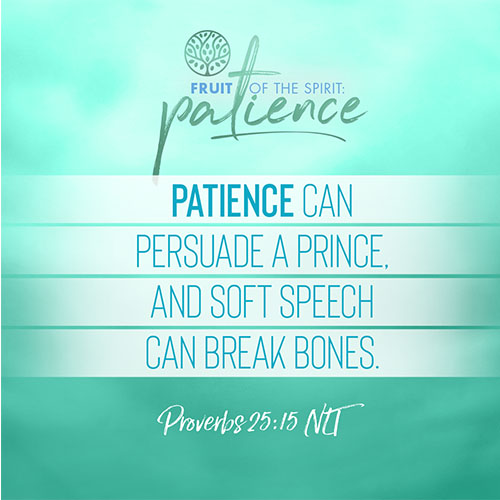 """""""Patience can persuade a prince, and soft speech can break bones.""""  - Proverbs 25:15"""