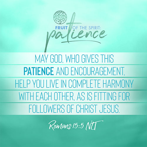 """""""May God, who gives this patience and encouragement, help you live in complete harmony with each other, as is fitting for followers of Christ Jesus.""""  - Romans 15:5"""