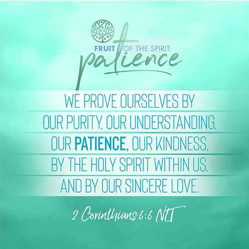 """""""We prove ourselves by our purity, our understanding, our patience, our kindness, by the Holy Spirit within us, and by our sincere love.""""  - 2 Corinthians 6:6"""