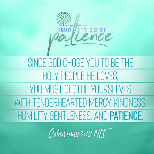 """""""Since God chose you to be the holy people he loves, you must clothe yourselves with tenderhearted mercy, kindness, humility, gentleness, and patience.""""  - Colossians 3:12"""
