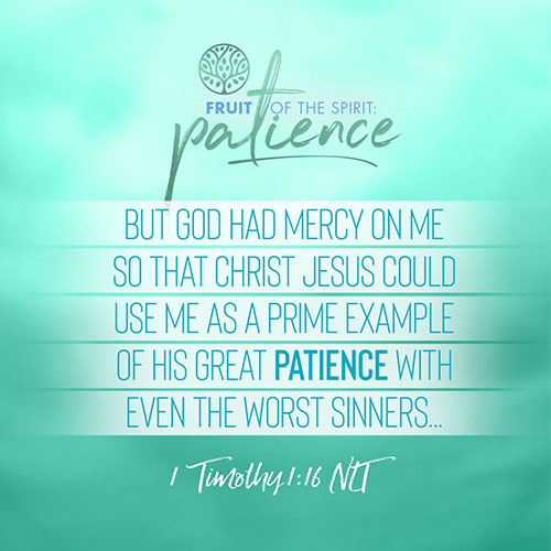 """""""But God had mercy on me so that Christ Jesus could use me as a prime example of his great patience with even the worst sinners...""""  - 1 Timothy 1:16"""