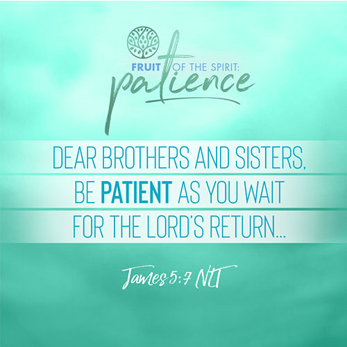 """""""Dear brothers and sisters, be patient as you wait for the Lord's return...""""  - James 5:7"""