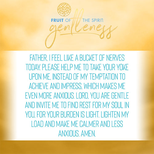 Father, I feel like a bucket of nerves today. Please help me to take your yoke upon me, instead of my temptation to achieve and impress, which makes me even more anxious. Lord, you are gentle and invite me to find rest for my soul in you, for your burden is light. Lighten my load and make me calmer and less anxious. Amen.