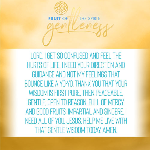 Lord, I get so confused and feel the hurts of life. I need your direction and guidance and not my feelings that bounce like a yo-yo. Thank you that your wisdom is first pure, then peaceable, gentle, open to reason, full of mercy and good fruits, impartial and sincere. I need all of you, Jesus. Help me live with that gentle wisdom today. Amen.