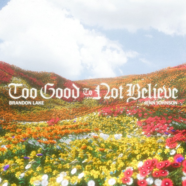 Too Good To Not Believe (single)